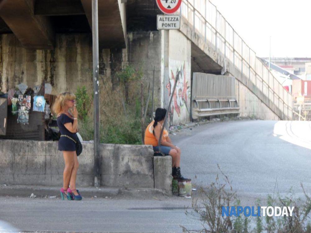 Sex guide in Ponte Nova